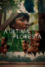 A Última Floresta